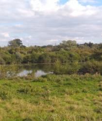 Le Marais de Tirancourt
